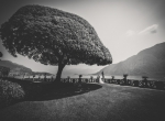 the newlyweds in the park of villa balbianello
